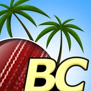 Beach Cricket Pro