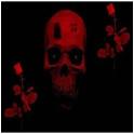 Skulls on fire icon