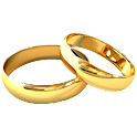 Marriage Report icon