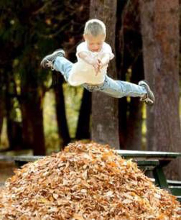15 reasons why boys need strict parents - Diving into leaves