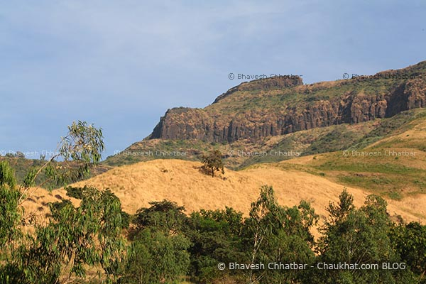 Dry grass on hill on way to Purandar