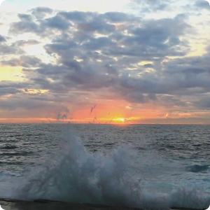 Ocean Sunrise Live Wallpaper - Android Apps on Google Play