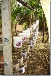 Prepativo Horta Organica Suspensa 1 22-03-10