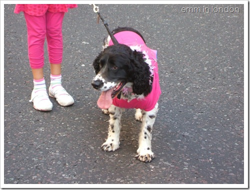 Race for Life 2010 10