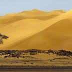 Victoria Rogotneva - 3 Sahara.jpg