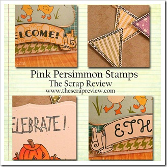 Pink Persimmon Sneak Peeks