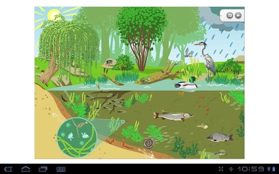 Pond ecosystem APK screenshot thumbnail 1