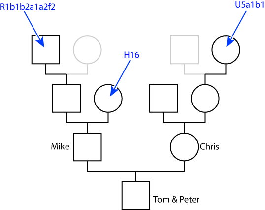 Maternal Haplogroups – From Here to There