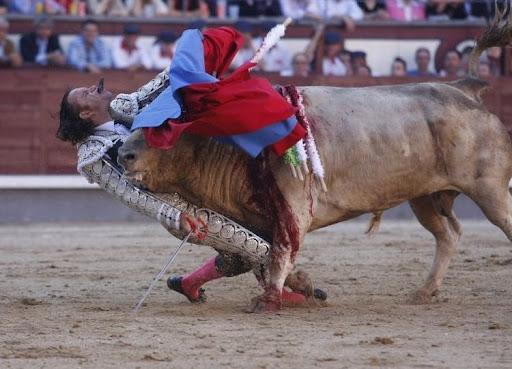 A vez do touro