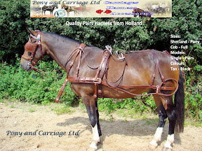 Pairs Tan Quality Leather Carriage Driving Harness From Holland