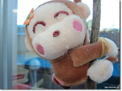 鎮壓的小猴子