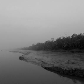 Towards the end by Kingshuk Mondal - Black & White Landscapes ( sundarban, black & white, forest, landscape, mangrove, river )