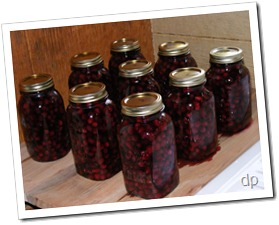 jars of blackberries