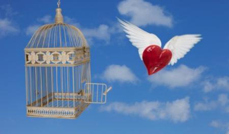 par brīvību no bauslības