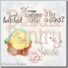 baby chick store image