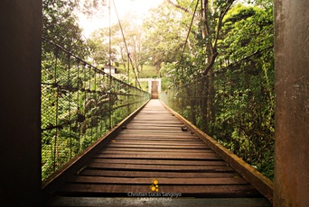 The Hanging Bridge at Tagaytay's Picnic Grove