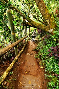 Tam-Awan Village Trail in Baguio City