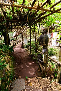 Trellised Path at Tam-Awan Village in Baguio