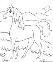 caballo_5