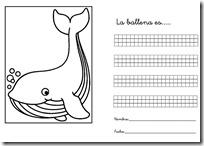 2 describe animales blogcolorear-com (11)