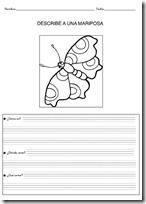 animales primaria - blogcolorear-com (13)