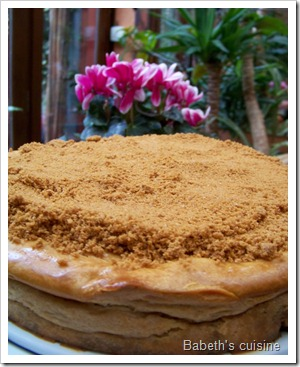 cheese cake speculoos