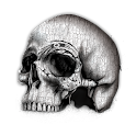 Skulls Live Wallpaper - FREE icon