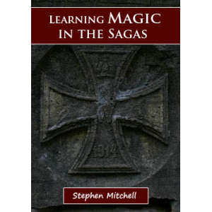 Learning Magic In The Sagas Cover