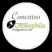 Concurso Drosophila