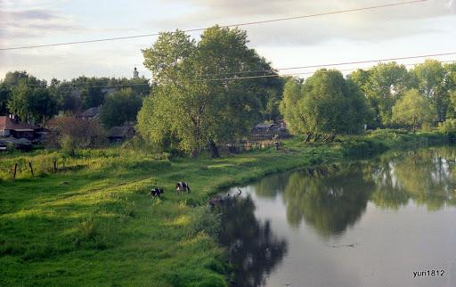 Речка Сасовка Рязанская область River Sasovka Ryazan Region photo yuri1812