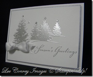 Scenic Season in White and Silver 004