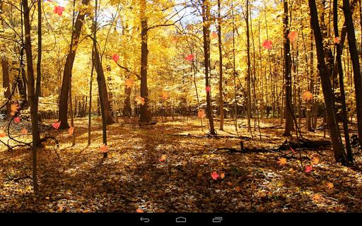 Autumn Wallpaper screenshots 7