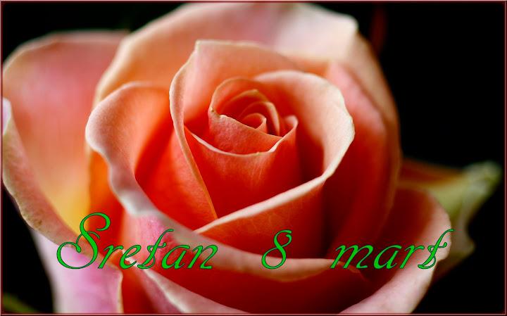 e čestitke za dan žena 8. mart DAN ZENA   Forum Klix.ba e čestitke za dan žena