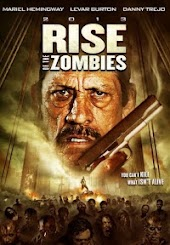 2013: Rise of the Zombies