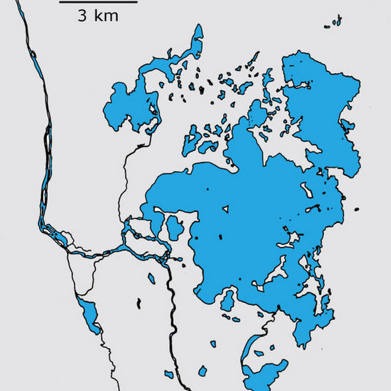 Mývatn is a shallow eutrophic lake situated in an area of active volcanism in the north of Iceland.