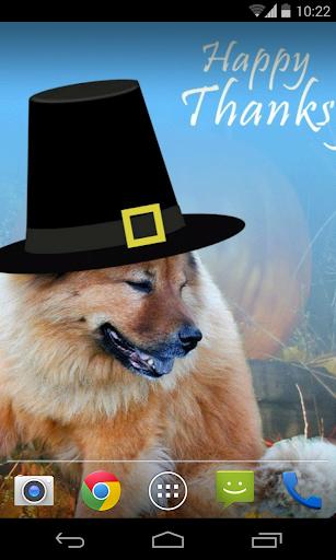 感恩節壁紙