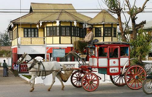 Pyinoolwin Horse Cart