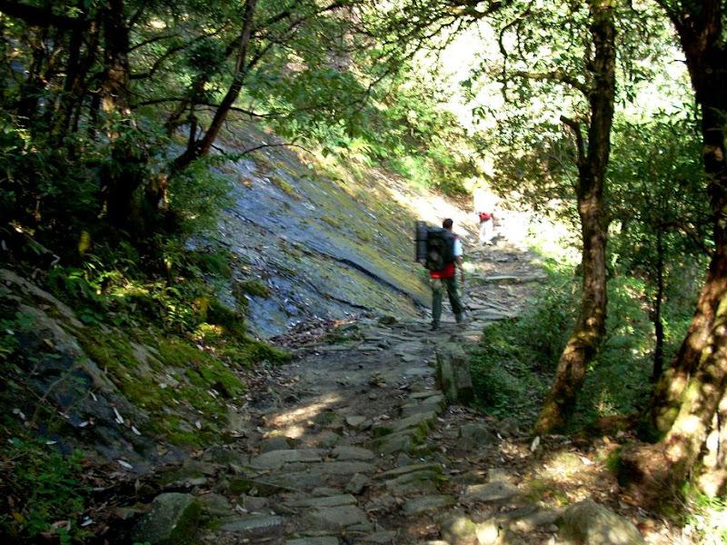 Travel Memoirs: Pindari Glacier, Uttranchal
