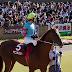 女傑2連続成敗ならず、柴山騎手とヤマニンキングリー号。