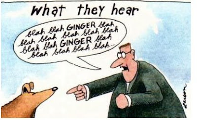 A panel from Gary Larson's Far Side comic: What dogs hear blah blah blah