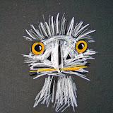 Struisvogel, krijt op karton