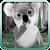 Talking Koala Bear file APK Free for PC, smart TV Download