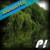Forest Rain Animated Wallpaper