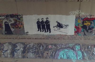 Curtin Graff