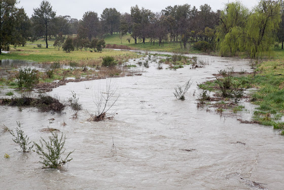 Ginninderra Creek in flood