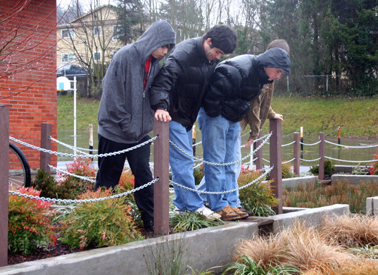 Mount Tabor Middle School Rain Garden