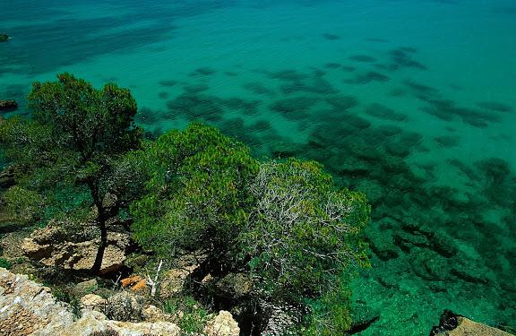 Costa i penya-segats prop de la punta de l'Àliga, L'Ametlla de Mar, Baix Ebre, Tarragona1997
