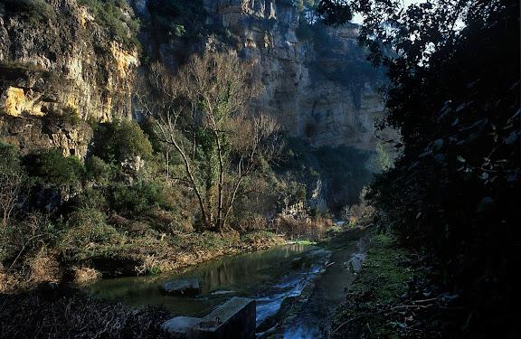 El gorg Negre, congost del riu Gaià a Querol, alt Gaià. Querol, Alt Camp, Tarragona 2001