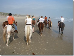 5289 Horseback Riding on the Beach South Padre Island Texas