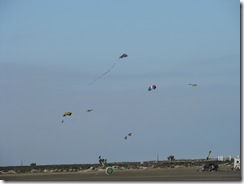 5738 Kite Flying at South Padre Island Texas